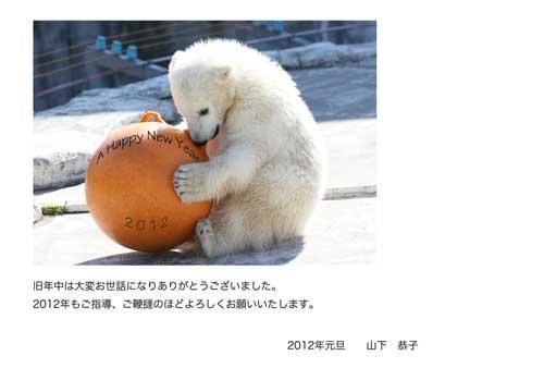 nenga_webzoo.jpg
